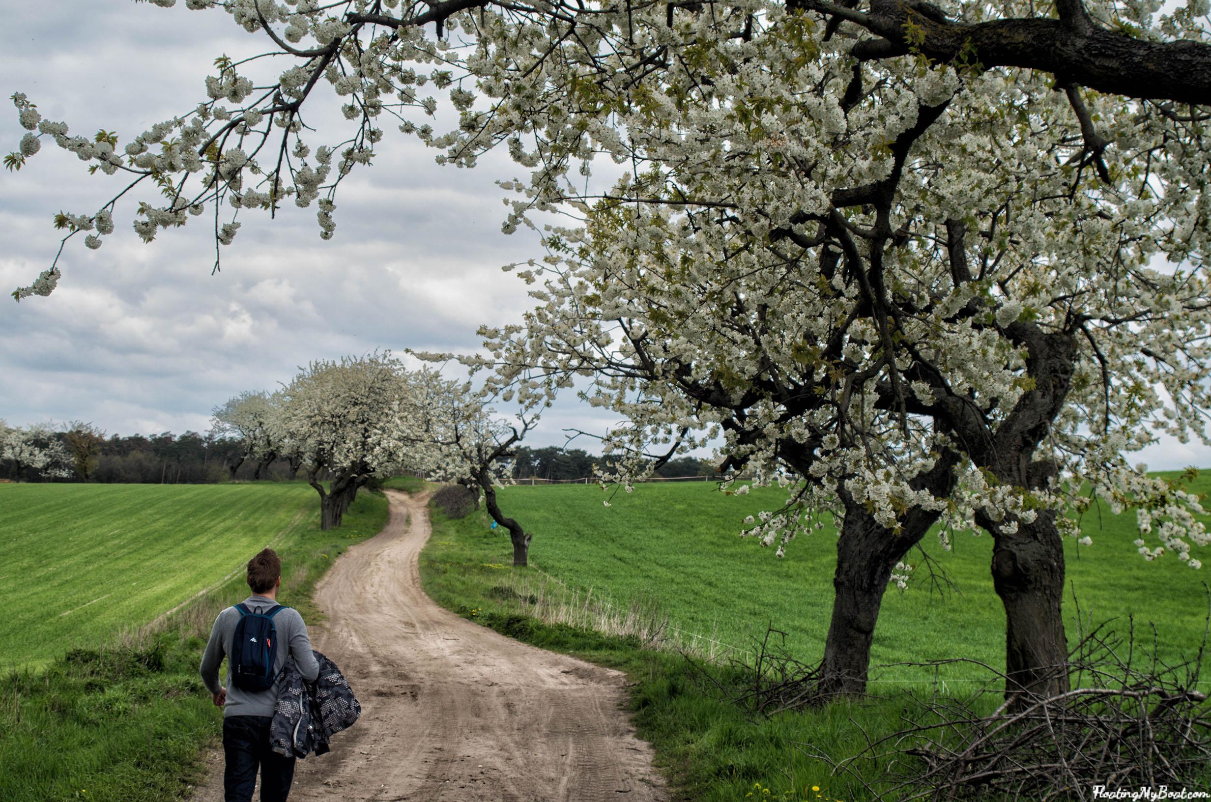 długi-weekend-majowy-wielkopolski-park-narodowy