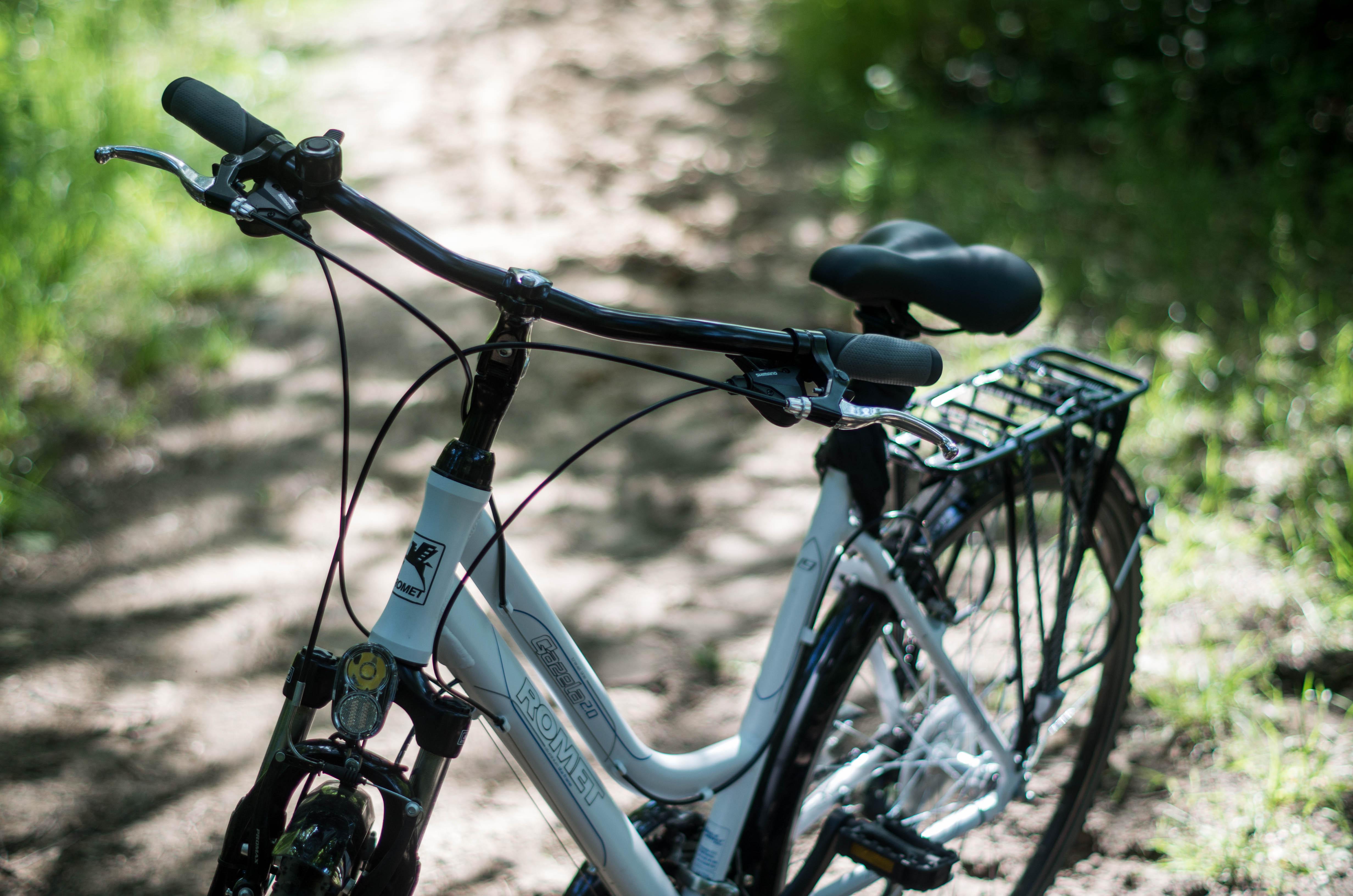 poznan rowery