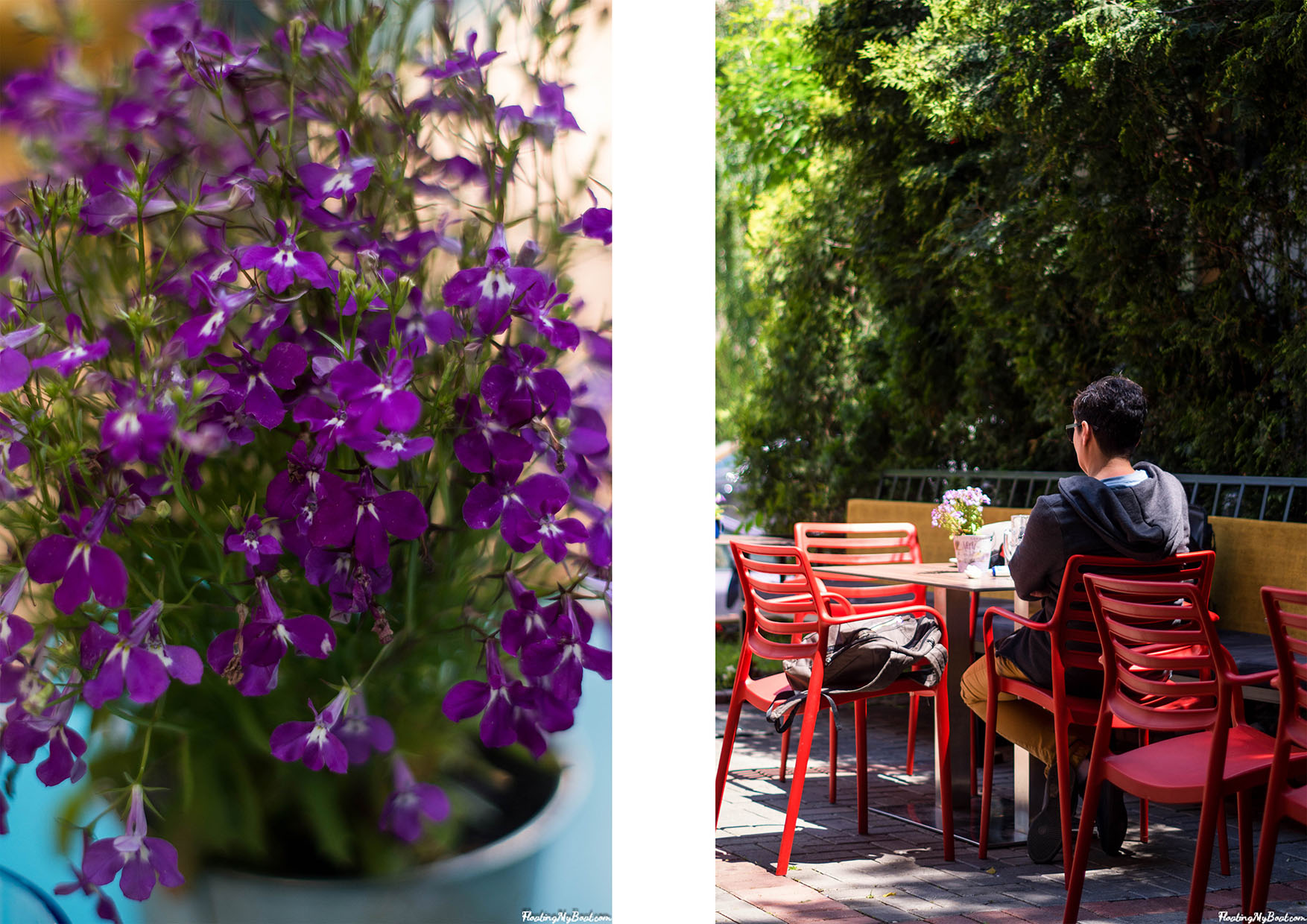 the best cafe pristina han