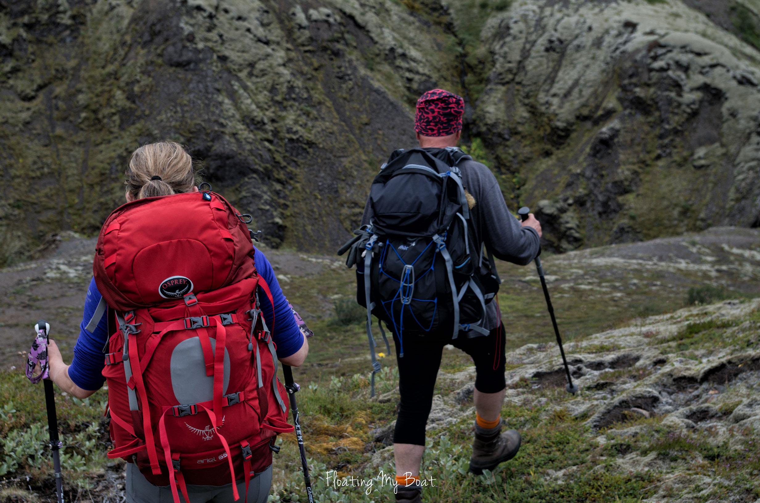 Núpsstaðaskógur-challenging-trekking-Iceland-practical-information