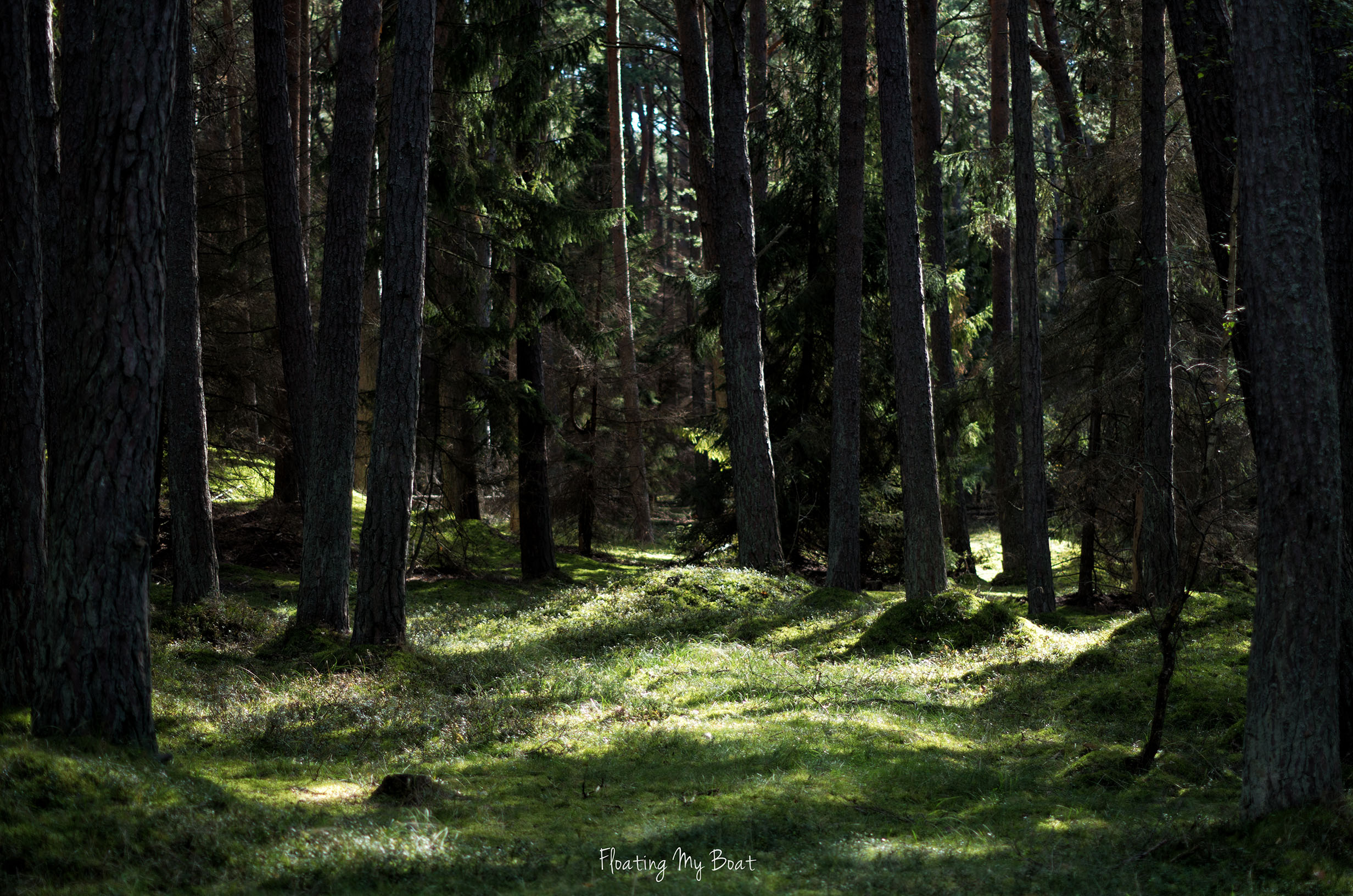 slowinski-national-park-visit-poland