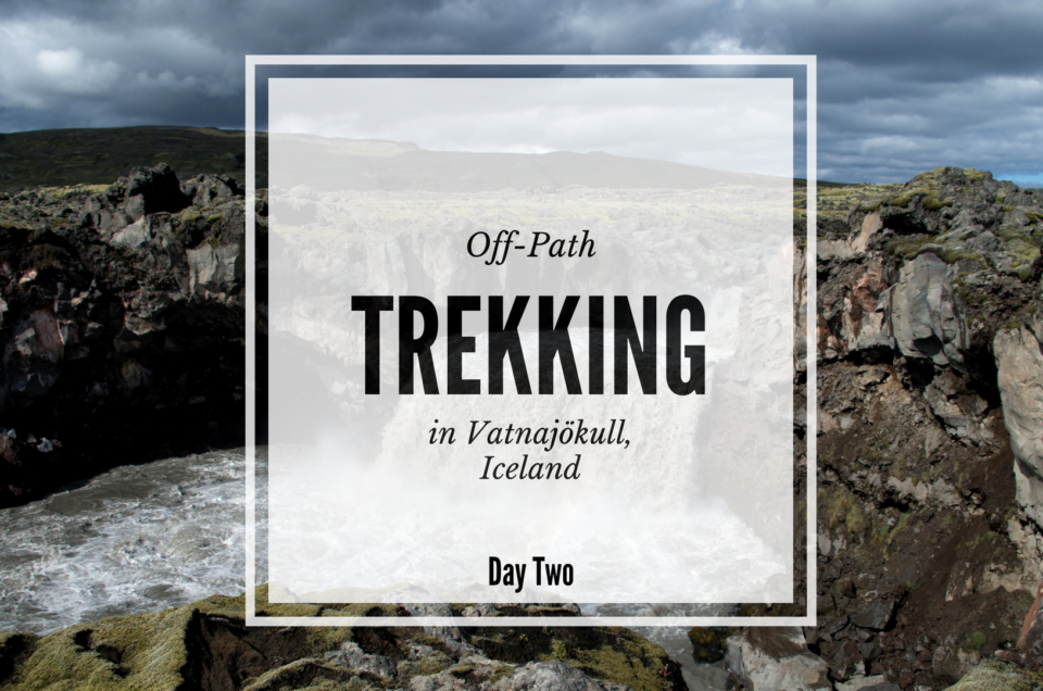 From Laki to Núpsstaðaskógur, trekking in Vatnajökull, Iceland - Day Two