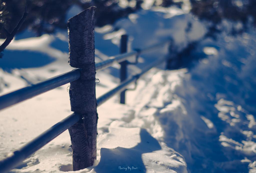 karkonoski-park-narodowy-zima