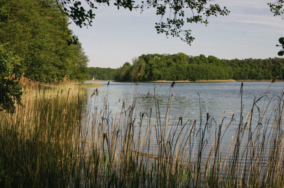#fotoszorty Majówka w Wielkopolskim Parku Narodowym - fotorelacja