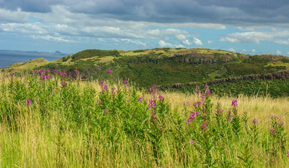 Edinburgh panorama, Salisbury Crags, Arthur's Seat, Scottish thistle